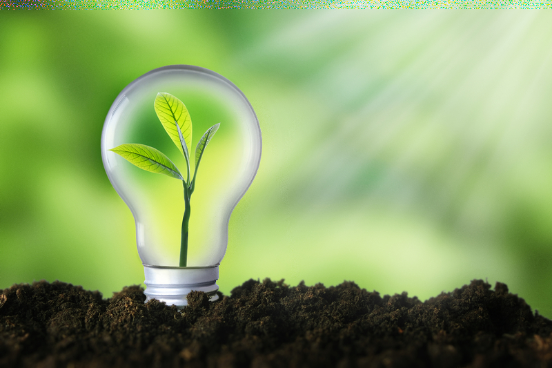 VELUX Group и Schneider Electric стартират партньорство в областта на възобновяемата енергия