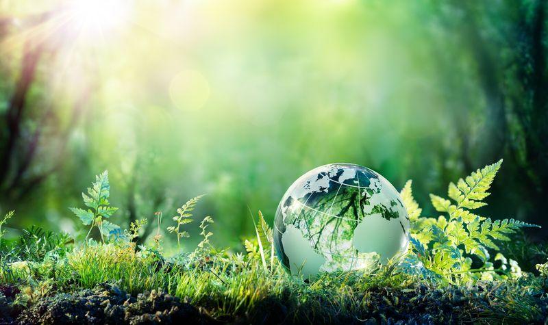 Загорка планира да намали въглеродните емисии с 30% до 2030 г.