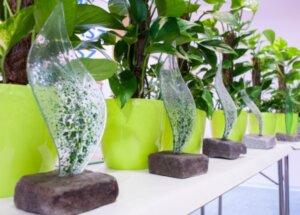 РТИК спечели международна награда за зелен офис